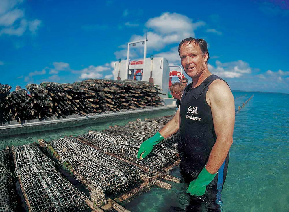 Coffin Bay Gazander Oysters. Commercial Photography Adelaide. Oyster Industry.