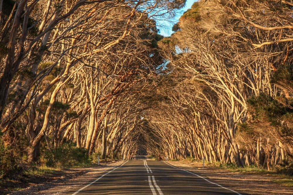 Life Time Private Retreats. Commercial Photography. Kangaroo Island Tourism. Luxury accomodation Kangaroo Island.