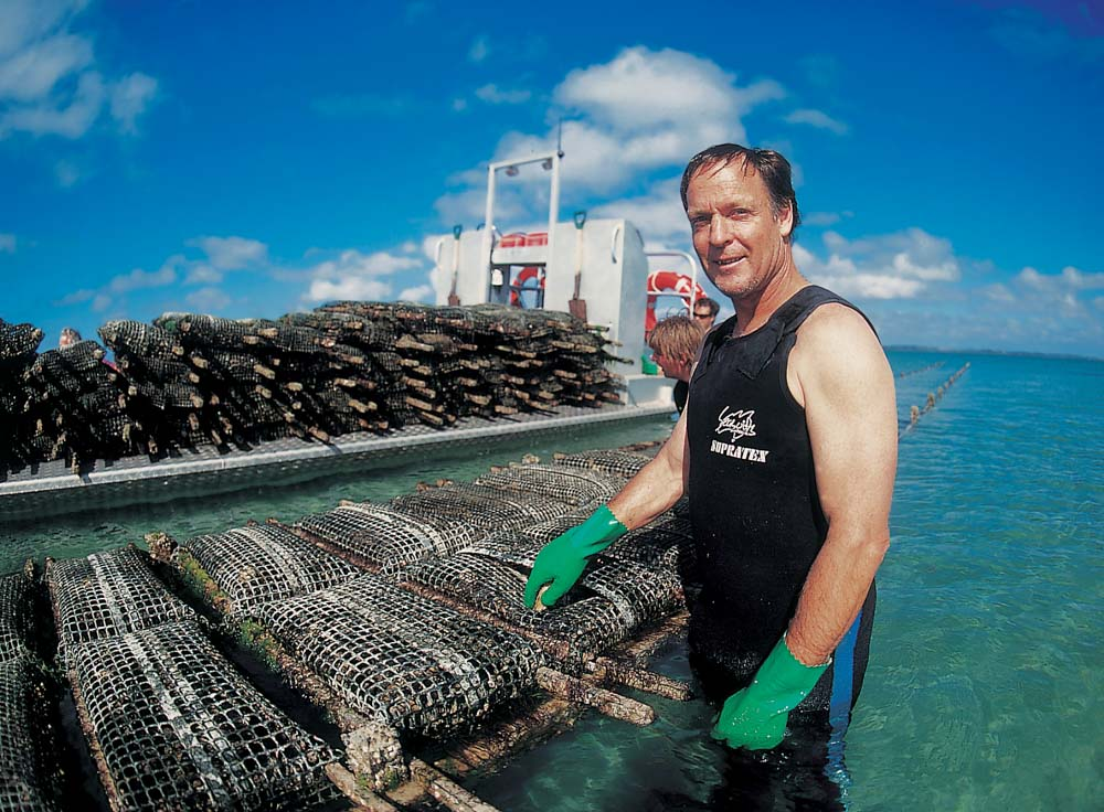 Commercial Photography Adelaide. SA Life. Coffin Bay Oyster Farmer.