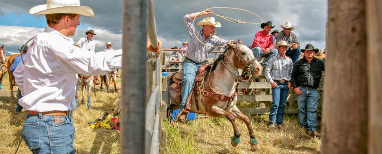 Rodeo Australia New Zealand. Event Photography.